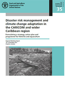 Disaster risk management and climate change adaptation in the CARICOM and wider Caribbean region