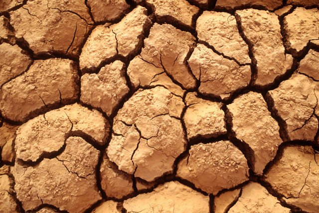 United Nations launches concerted push for effective drought policies