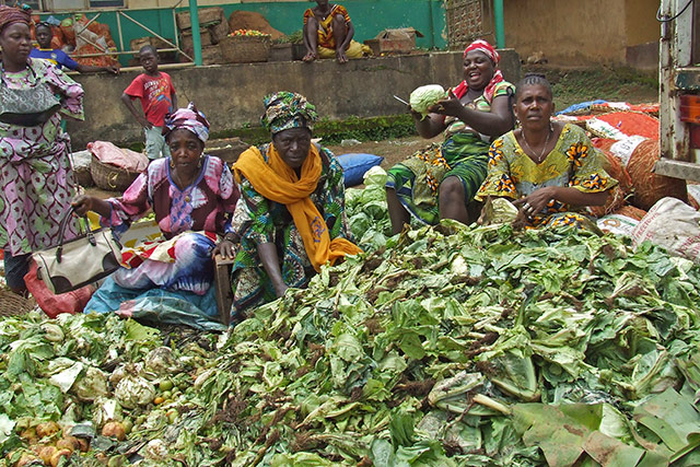 Sierra Leone: Women vegetable farmers face huge losses due to the Ebola outbreak
