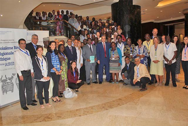 FAO organizes its third Africa ECTAD regional meeting in Egypt