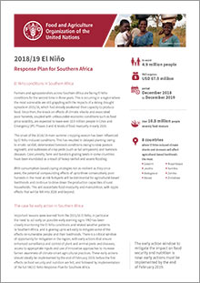 2018/19 El Niño Response Plan for Southern Africa | Short version