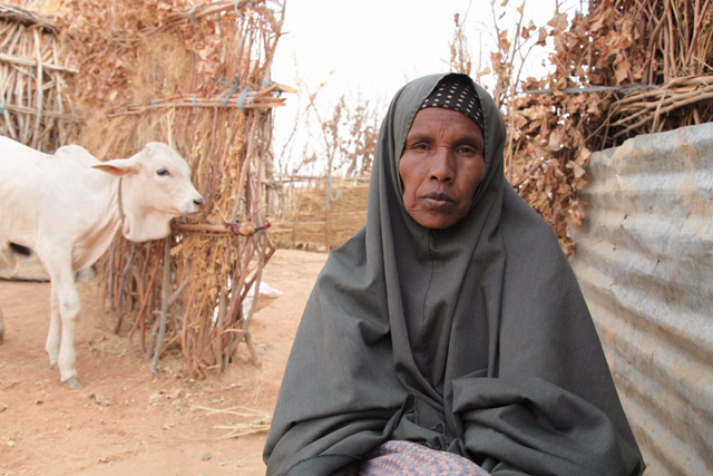 Heads of UN food agencies call for greater investment in resilience in drought-hit Ethiopia