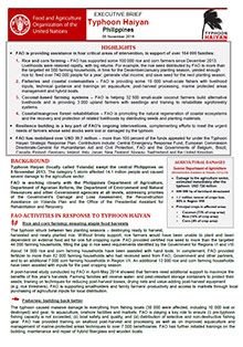 typhoon haiyan philippines executive brief 04 november 2014 fao
