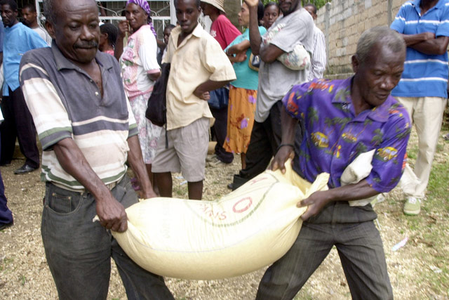 Haiti: six months on, agriculture needs more support