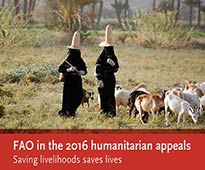 FAO 2016 appeal