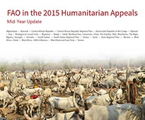 FAO 2015 Appeal Mid-year update