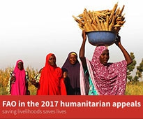FAO 2017 appeal