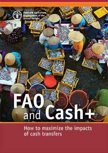 FAO and Cash+: How to maximize the impacts of cash transfers