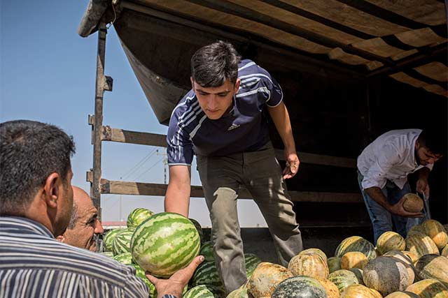 World Food Day in Iraq: Working together to achieve zero hunger by 2030