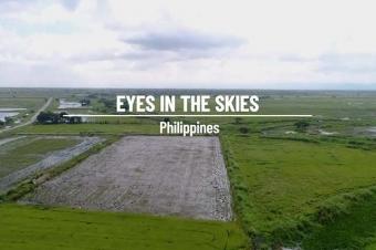 Philippines : FAO in Emergencies