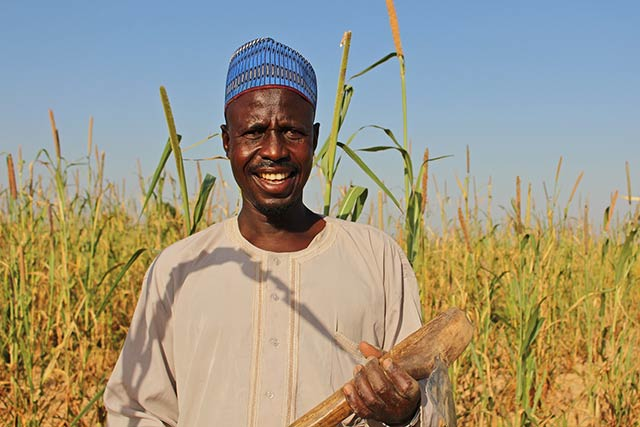 Returning to cropping brings great rewards in northeastern Nigeria