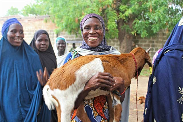 Goats help power the engine of recovery for women in northeastern Nigeria