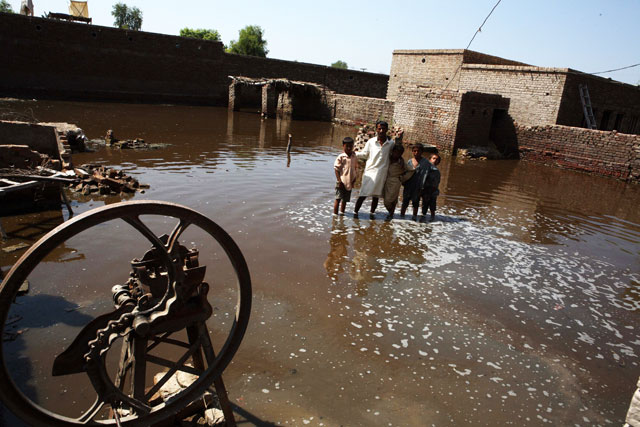 Urgent help needed for flood-stricken Pakistan farmers