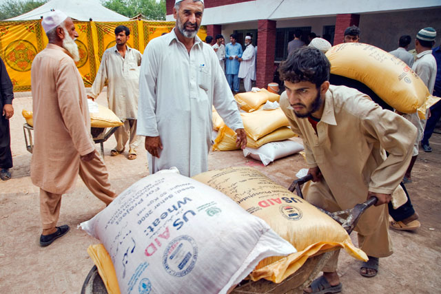 FAO distributes huge quantities of wheat seeds in Pakistan