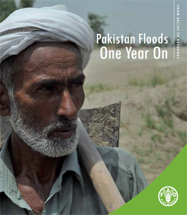 Pakistan Floods One Year On: From Relief to Recovery