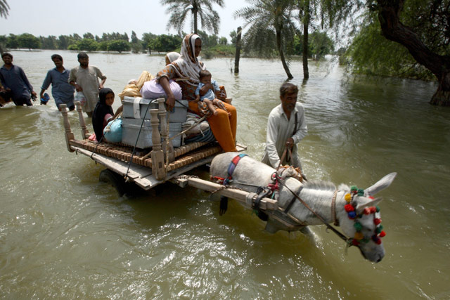 FAO, IFAD, WFP to accelerate assistance to Pakistan flood victims