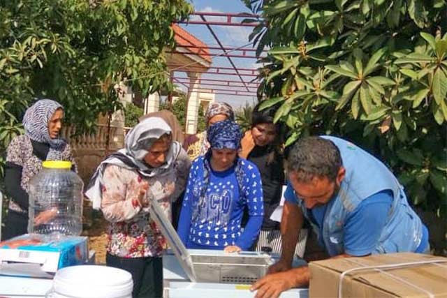 Supporting the livelihoods of farmers and women groups in northern Syrian Arab Republic