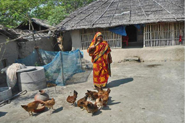 Immediate Assistance to Women and Fish Farmers Severely Affected by Cyclones in Bangladesh