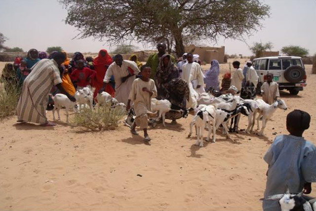 Support to information supply and crisis response coordination within the Food Security Cluster in Chad