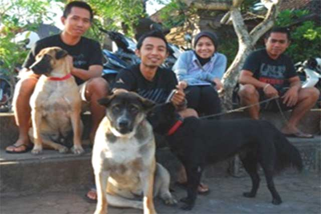 Assistance through FAO for the control of rabies in Indonesia
