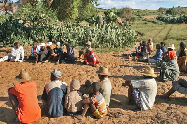 Strengthening food security and livelihoods for vulnerable populations in the drought-affected communities in Madagascar