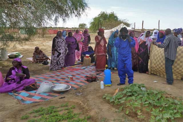 Consolidate and strengthen agriculture and disaster risk management responses to food security and nutrition through resilience building in Mauritania