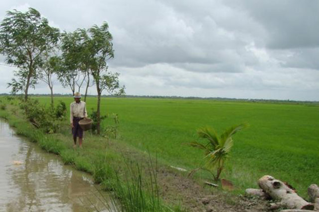 Immediate support to dry season crop production for small-scale farmers in Myanmar