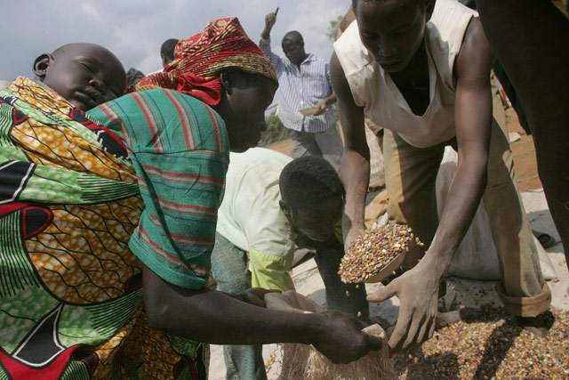 FAO initiative helps small farmers increase food production