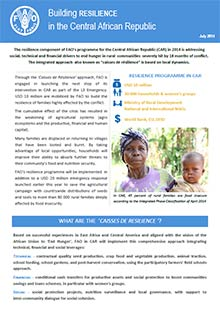 Building Resilience in the Central African Republic