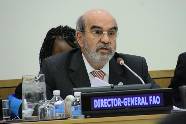FAO's leader addresses UN Security Council on food and farming's role amid conflicts