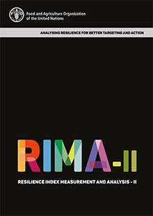 RIMA-II: Resilience Index Measurement and Analysis - II