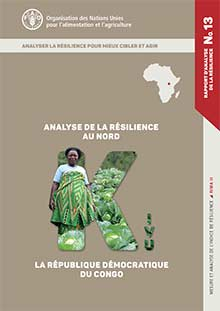 Resilience analysis of North Kivu, Democratic Republic of the Congo (in FRENCH)