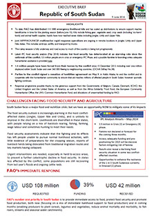 South Sudan - Executive brief 5 June 2014