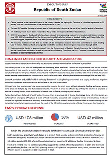 South Sudan - Executive brief 25 July 2014