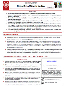South Sudan - Executive brief 3 March 2014