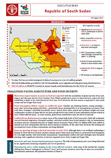 South Sudan - Executive brief 29 August 2014