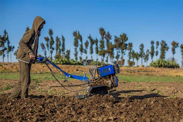 Protecting agriculture from shocks and crises critical to defeating hunger