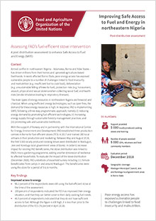 Northeastern Nigeria - Assessing FAO's fuel-efficient stove intervention