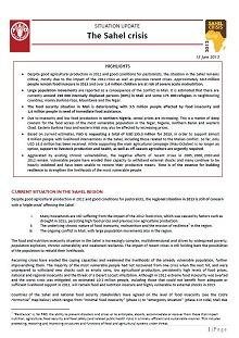 Situation Update: The Sahel crisis 2012 - 13 June 2013