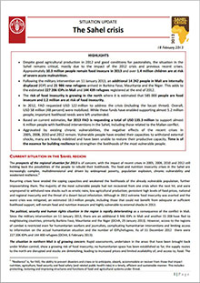 Situation Update: The Sahel Crisis - 18 February 2013