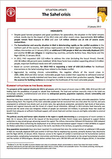 Situation Update: The Sahel Crisis - 25 January 2013