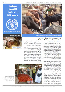 FAO Sudan Monthly Newsletter - August/September 2013 (in ARABIC)