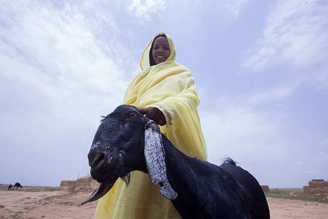 Acting early to mitigate drought in Sudan