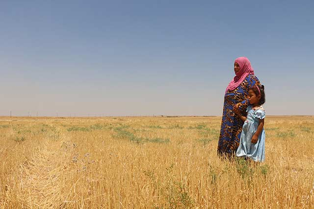 Green Climate Fund supports the Syrian Arab Republic to mitigate and adapt to the effects of climate change