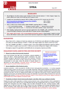 Syria Crisis - Executive brief 4 July 2013