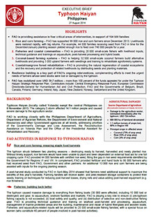 Typhoon Haiyan Philippines - Executive brief 27 August 2014