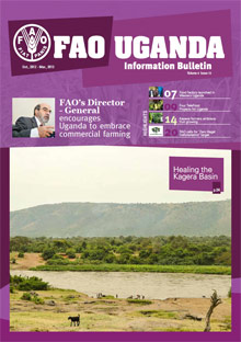 FAO Uganda Information Bulletin - Vol. 4 Issue 13, October 2012 - March 2013