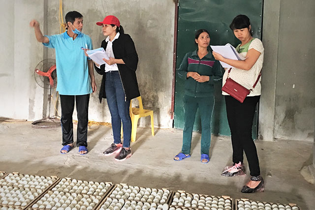 New hygiene certification system in poultry hatcheries in Vietnam
