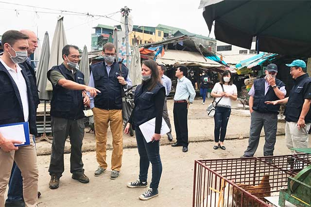 Emergency preparedness for H7N9 introduction to Viet Nam