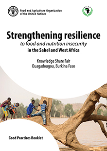 Strengthening resilience to food and nutrition insecurity in the Sahel and West Africa